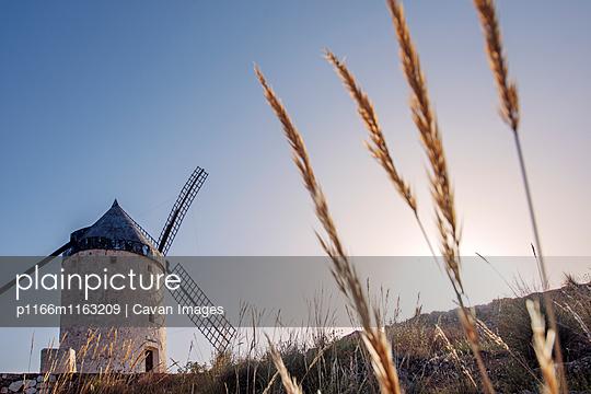 p1166m1163209 von Cavan Images