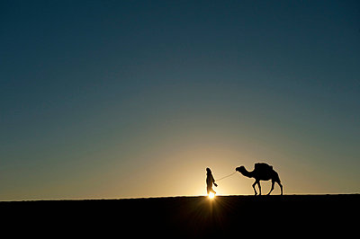 Silhouette of Berber 'Blue man' leading camel across sand dunes at dusk in Erg Chebbi near Merzouga; Sahara Desert, Morocco - p442m840151 by Ian Cumming