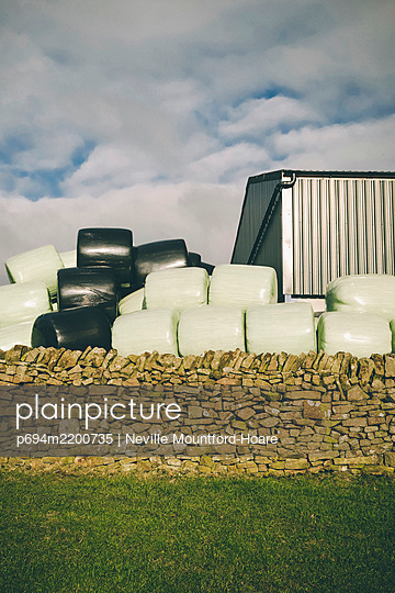Wrapped Bales of Hay behind Old Stone Wall, Staffordshire, Peak District, England, UK - p694m2200735 by Neville Mountford-Hoare