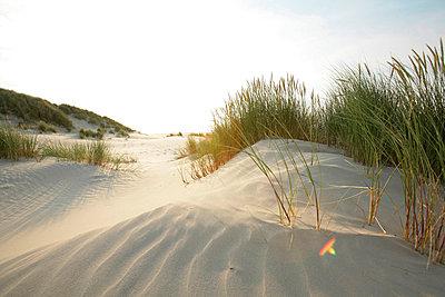 Holländische Küste - p5670704 von ofoulon