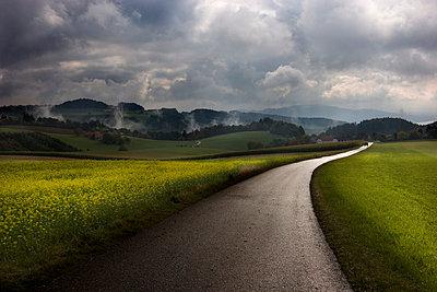 Feldweg nach einem Gewitter - p9792886 von Zickert