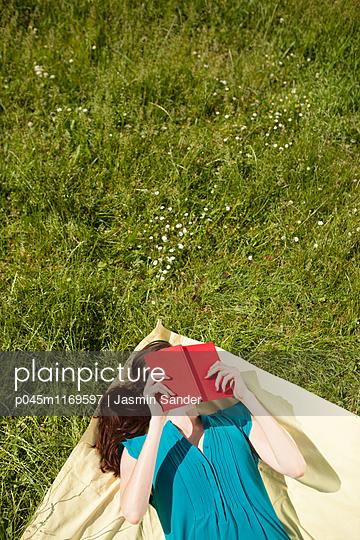 Buch-Sommer - p045m1169597 von Jasmin Sander
