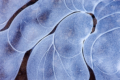 Ice patterns in a Dartmoor pond in winter, Dartmoor National Park, Devon, England, United Kingdom, Europe - p8713115 by Adam Burton