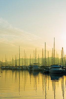 Msida Creek Harbour, Valletta, Malta, Mediterranean, Europe - p871m993809 by Christian Kober