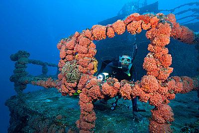 Scuba diver on shipwreck - p9243311f by Image Source