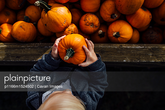 p1166m1524502 von Cavan Images