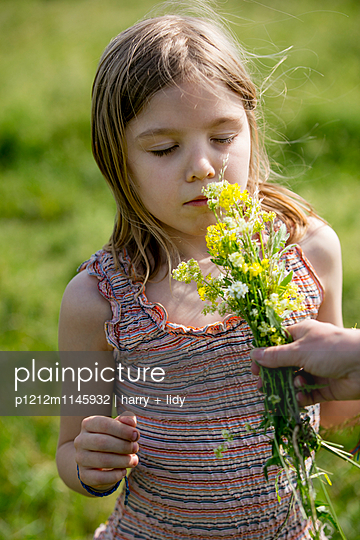 Mädchen in der Wiese riecht an einem Blumenstrauß - p1212m1145932 von harry + lidy