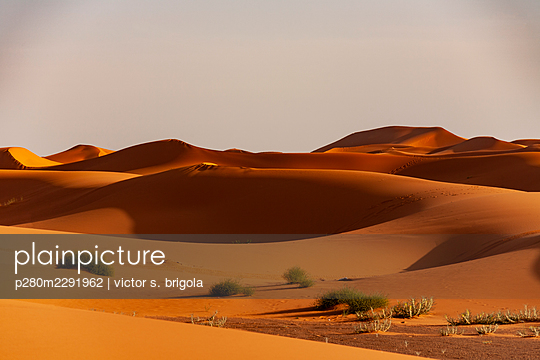 Sahara Sand Dunes - p280m2291962 by victor s. brigola