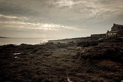 France, Penn Lann, Stonehouse on the coast - p910m2237734 by Philippe Lesprit
