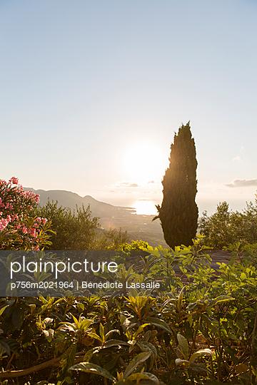 Blick auf das Meer - p756m2021964 von Bénédicte Lassalle