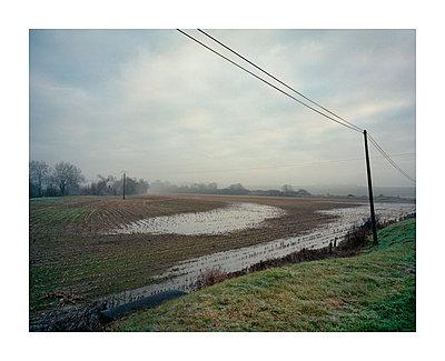 Flooded wheat fields - p1118m1553115 by Tarik Yaici