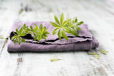 Woodruff on cloth - p300m1588077 by Mandy Reschke