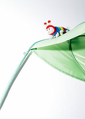 Fur Caterpillar - p1085m1116414 by David Carreno Hansen