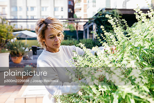 Mature woman looking and touching flowering plant while standing at rooftop garden - p300m2226698 by Josep Rovirosa