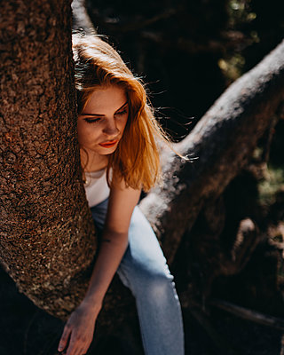 Young woman sitting on tree - p1184m1424543 by brabanski