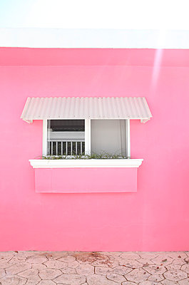 Pink - p045m777543 by Jasmin Sander