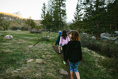 Rear view of siblings walking on field at Inyo National Forest - p1166m1488910 by Cavan Images