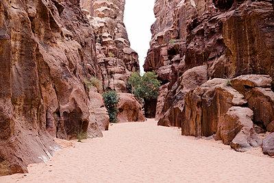 Canyon in Wadi Rum - p1351m2082324 von Janine Meyer