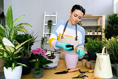 Young woman working in a gardening laboratory or plant shop - p300m2274577 von Giorgio Fochesato