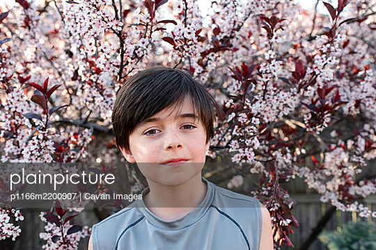 Portrait of serious young boy in front of flowering trees in a garden. - p1166m2200907 by Cavan Images