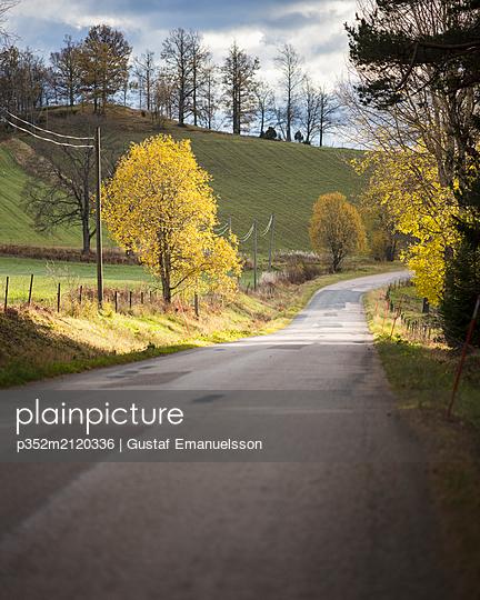 Rural road - p352m2120336 by Gustaf Emanuelsson
