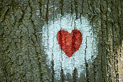 Heart painted on tree trunk - p300m1587229 by Zeljko Dangubic