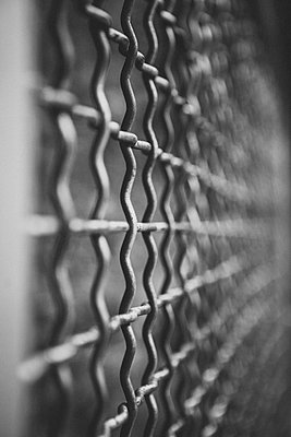 Drahtzaun Close Up  - p1345m1194853 von Alexandra Kern