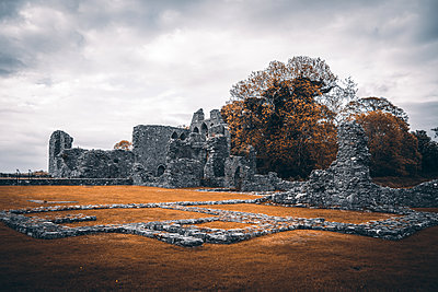 Ruined monastery, Inch abbey, Northern Ireland - p1681m2283641 by Juan Alfonso Solis