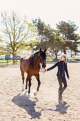 Teenage girl leading a horse in Sweden - p352m2040531 by Serny Pernebjer