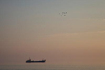 Vogelschwarm und Baggerschiff - p606m957509 von Iris Friedrich