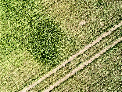 Dürre in Deutschland - p1079m2157731 von Ulrich Mertens