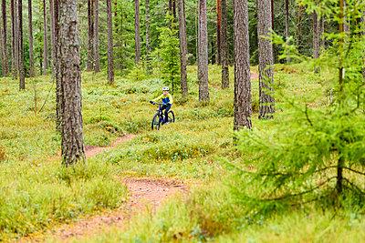 p312m1495734 von Mikael Svensson