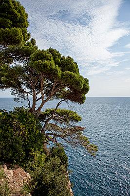 Küste - p712m1541270 von Jana Kay
