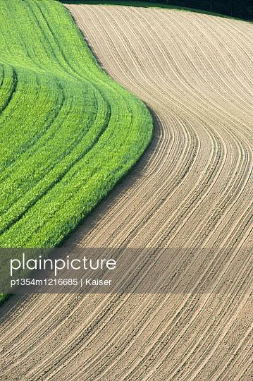 Verschiedenen Felder - p1354m1216685 von Kaiser