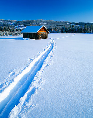 Ski tracks in the snow. - p575m1075204f by Roine Magnusson