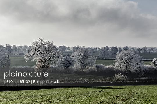 Winterlandschaft - p910m1195102 von Philippe Lesprit