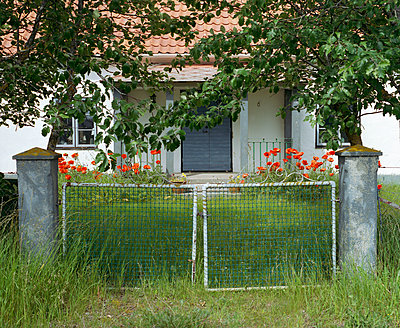 Garden - p972m1056355 by Björn Keller