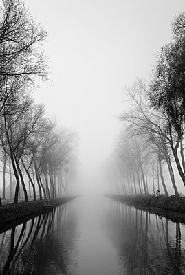 The Damme Canal - p1245m1043396 by Catherine Minala