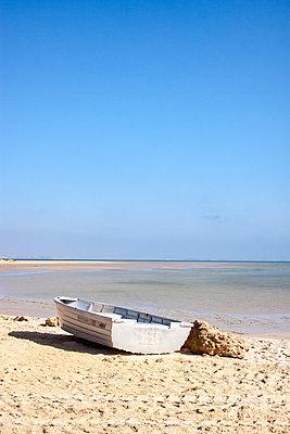 p754m1445578 by Valea Diller-El Khazrajy