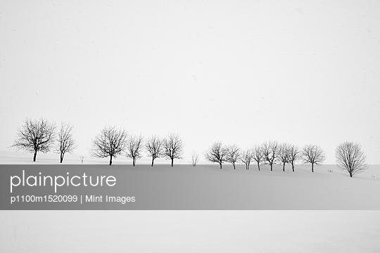 p1100m1520099 von Mint Images