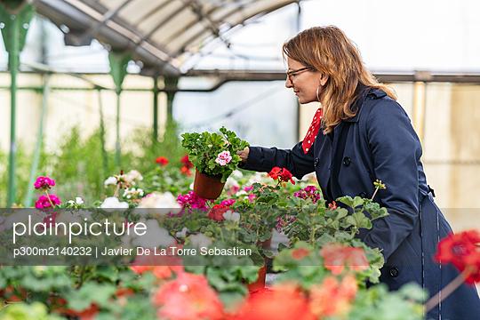 Woman buying flowers in plant nursery - p300m2140232 by Javier De La Torre Sebastian