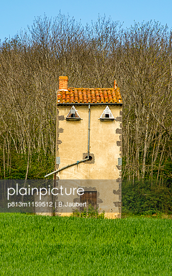 Pigeon loft in the countryside - p813m1159512 by B.Jaubert