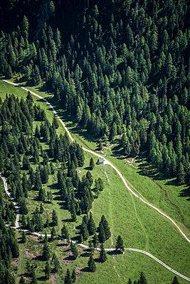 Aerial view of path across the Vallunga valley, Selva Gardena, South Tyrol, Italy, Europe - p1062m2199780 by Viviana Falcomer