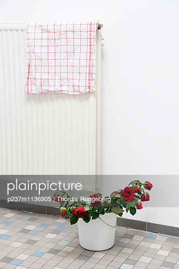 die Rosen sind im Eimer - p237m1136905 von Thordis Rüggeberg
