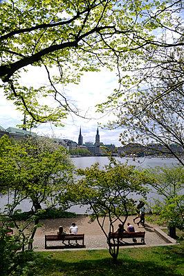 Alster; Hamburg - p0671666 von Thomas Grimm