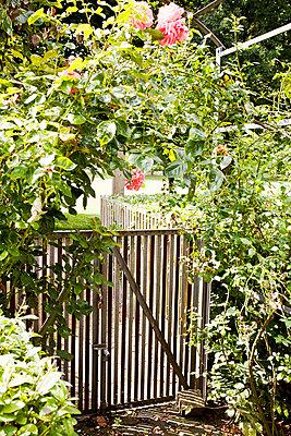 garden - p1043m1462565 by Ralf Grossek