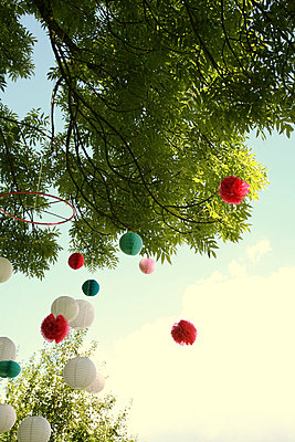 Lanterns on tree - p375m1564624 by whatapicture