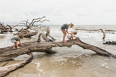 Caucasian by and girls examining driftwood on beach - p555m1504320 by Marc Romanelli