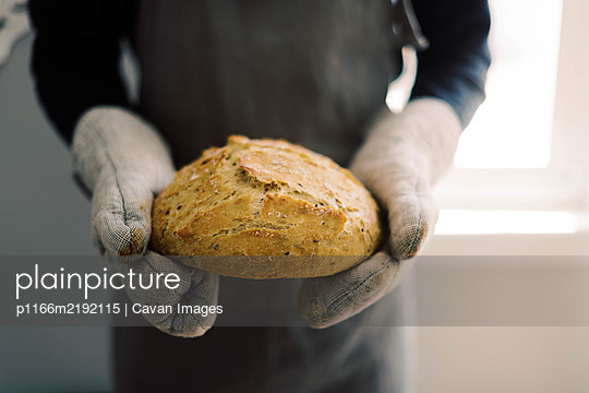 Close up of a man holding a loaf of fresh baked bread in his hands. - p1166m2192115 by Cavan Images