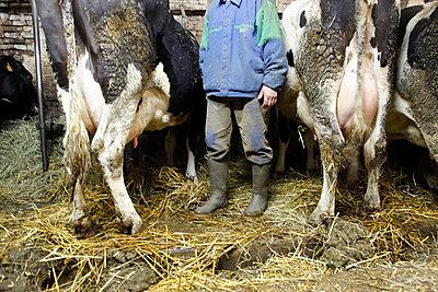 Bauer - p1058m831614 von Fanny Legros